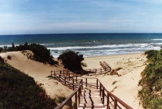 sabaudia-spiaggia-dune